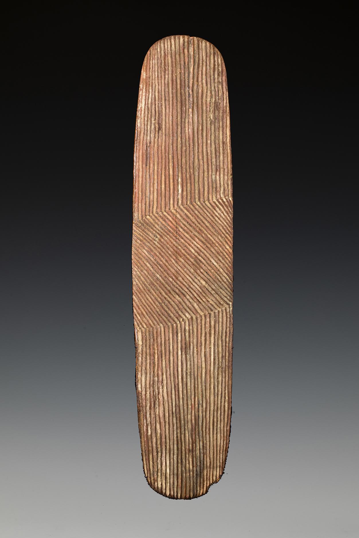 Wunda Shield, West Australia, 19th Century